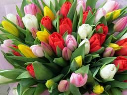 Тюльпаны Минск к 8 марта 2021
