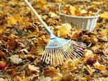 Уборка листьев - фото 3