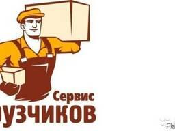 Услуги грузчиков (грузчики) / грузоперевозки в Светлогорске