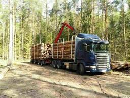 Услуги лесовоза с гидроманипулятором (Борисов)