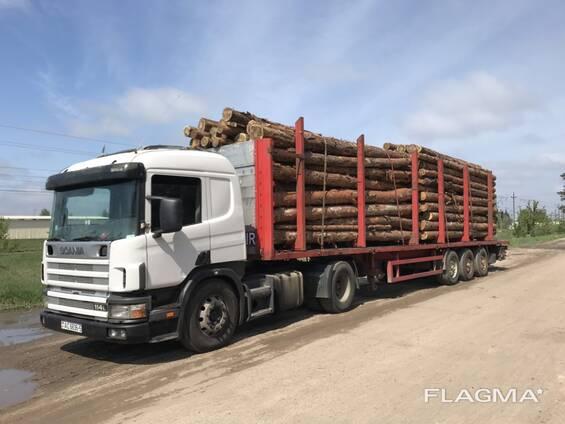 Услуги площадки лесовоз