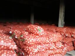 Овощехранилище хранение овощей фруктов и товаров