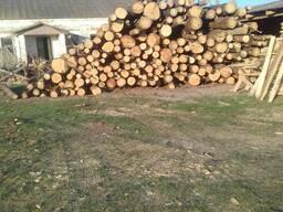 Услуги по распиловке леса на постоянной основе