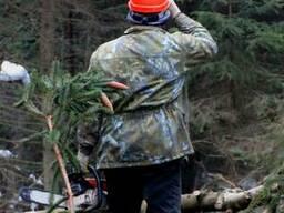 Валка леса заготовка кругляка