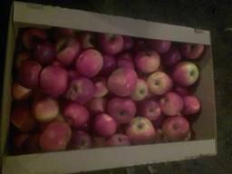 Яблоко для пром. переработки продаем.