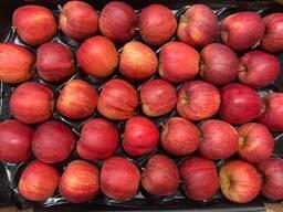Яблоко от производителя La-Sad