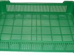 Ящик для транспортировки и хранения ягоды 600x400x120