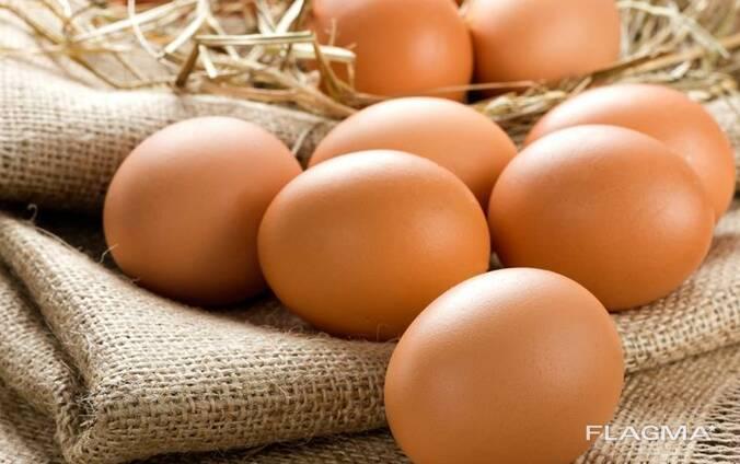 Куплю яйцо С1, С2 Самовывозом