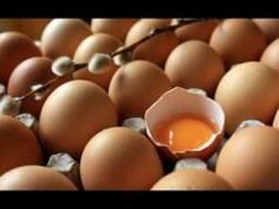 Яйцо куриное Белоруских производителей на постоянной основе.