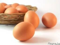 Яйцо куриное. В наличии!