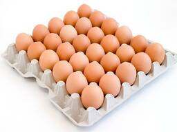 Яйцо от производителя, с Дисконтом!