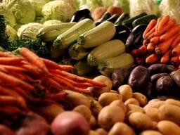 Закупаем картофель, морковь, капусту, яблоки