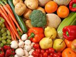 Закупаем овощи оптом. Картофель, морковь, свекла, капуста, лук и другие - фото 1