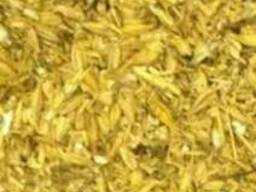 Зерноотходы ячмень. Просо. Кукуруза.